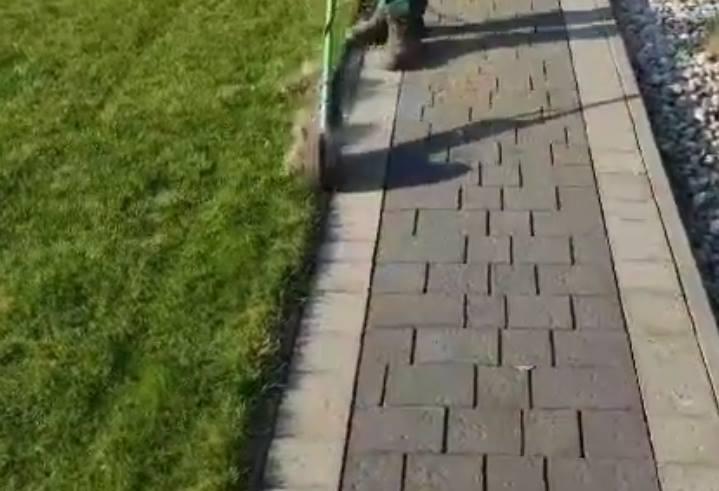 oddzielenie trawnika